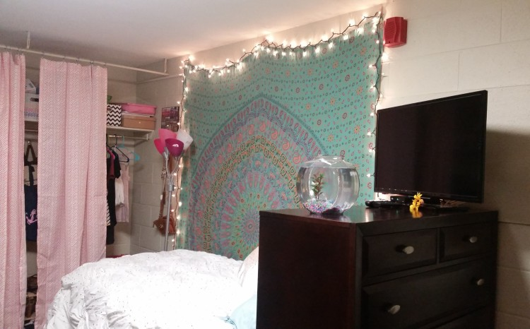 Delta Gamma Sorority House Room