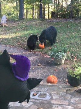 Beary Scary Halloween